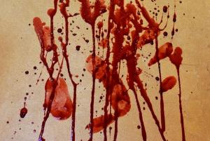 Blood platter4, foto: Johanne a Carole Brunet