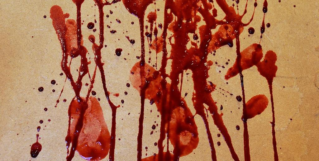 blood platter4  Johanne et Carole Brunet e1468858150290