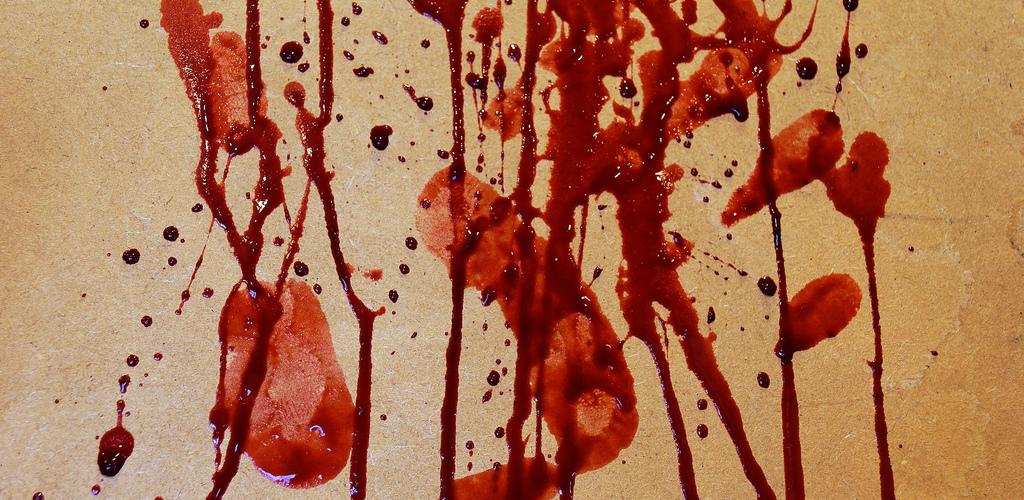blood platter4  Johanne et Carole Brunet cr