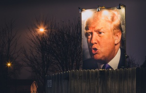 Donald Trump Backyard Photo Sign at Night - West Des Moines, Iowa, foto: Tony Webster