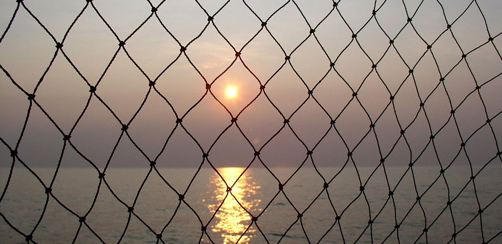 1024px Lake Erie Sunset with fish net e1462779712885