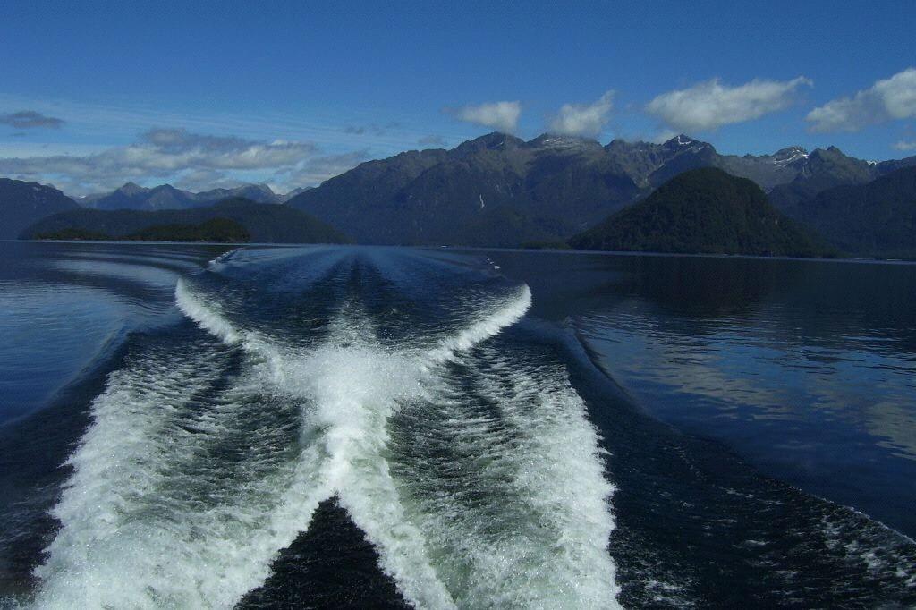 New Zealand Water Angel by Aaron Nicholson