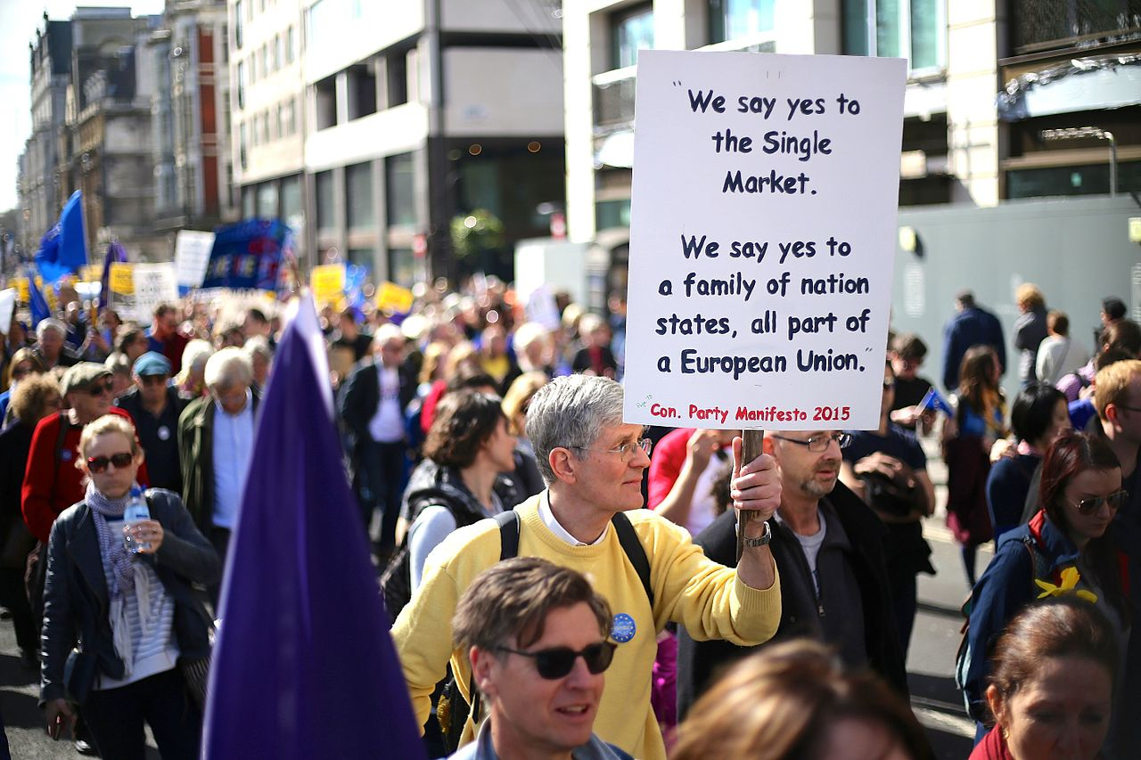 The pro EU march from Hyde Park to Westminster in London on March 25 2017 photo Ilovetheue