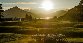Kathrin Stefan Marks New Zealand Sunset